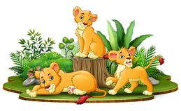 Group of lion cartoon in the park with green plants vector illustration