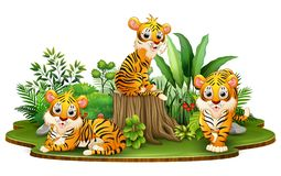 Group of tiger cartoon in the park with green plants royalty free illustration