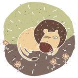 Illustration grunge tirée par la main de lion mignon sur le fond floral Photos libres de droits