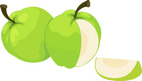 Illustration of guava. On white background Royalty Free Stock Photo
