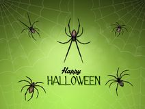 Halloween card with spiders Stock Image
