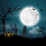 Halloween night with pumpkins and ghost. Illustration of Halloween night with pumpkins and ghost Royalty Free Stock Photography