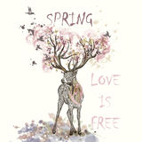 Illustration with hand drawn deer, flowers in it horns and bran. Art boho illustration with hand drawn deer, flowers in it horns and branches. Ideal for T-shirt Royalty Free Stock Images