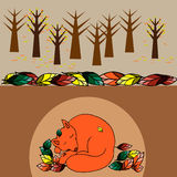 Illustration with hand-drawn sleeping cute fox Stock Images