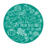 Illustration with hand drawn vegetables Stock Photography
