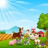 Happy animals at farm background. Illustration of Happy animals at farm background Stock Photo