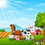 Happy farm animals on daylight Royalty Free Stock Photography