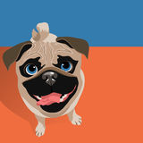 Illustration of a happy funny Pug dog. Stock Photography