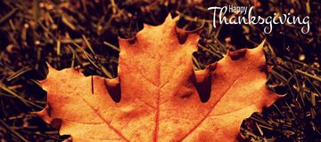 Composite image of illustration of happy thanksgiving day text greeting. Illustration of happy thanksgiving day text greeting against maple leaf fallen on green royalty free stock images