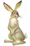Illustration of hare on a white background, vector cartoon image. Vector image. Scale to any size without loss of resolution vector illustration