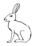 Illustration of hare, wildlife, nature, animal Stock Photography