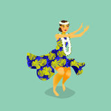 Illustration of a Hawaiian hula dancer woman Stock Image