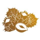 Illustration of hazelnuts Stock Images
