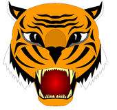The Illustration of the head of the cruel tiger. Insulated on white background Stock Photos