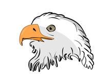 Illustration of  head eagle Royalty Free Stock Photo
