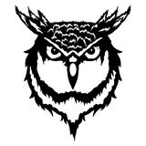 Illustration of a head of an owl. Vector illustration of a head of an owl royalty free illustration