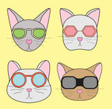 Illustration head rodents with glasses Royalty Free Stock Images