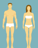 Illustration of a healthy body type of man and wom Royalty Free Stock Images