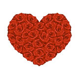 Illustration of heart from red roses. On white background Royalty Free Stock Images