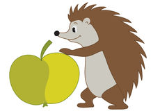 illustration of  hedgehog with apple - vector Stock Image
