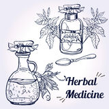 Illustration of herbal medicine. Royalty Free Stock Photo