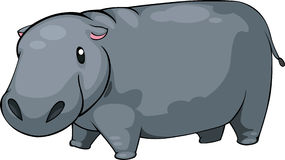 Illustration Hippo vector. Illustration cartoon Hippo on White background vector file Stock Image