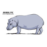 Illustration of hippo Stock Photography