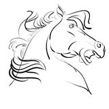 Illustration of horse Royalty Free Stock Photos