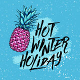 Illustration hot winter holiday with pineapple on a blue background. Design elements. Royalty Free Stock Photography