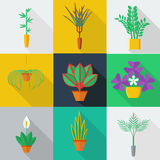 Illustration of houseplants. Indoor and office plants in pot. Flat style vector icon set Stock Image
