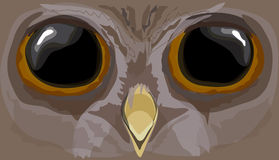 Illustration howlet. The head of an owl. Royalty Free Stock Images