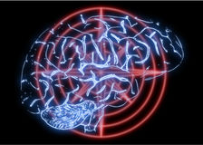 Illustration of a Human Brain Stock Photography