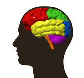 Illustration of human brain and male profile Stock Images