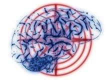 Illustration of a Human Brain Royalty Free Stock Photos
