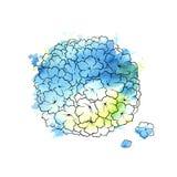 Beautiful blue hydrangea. Illustration of hydrangea Background with blue flowers vector illustration