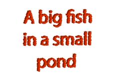 Illustration, idiom write a big fish in a small pond isolated in. A white background composition Royalty Free Stock Photos