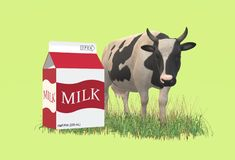 An illustration image of a cow grazing grass with a package of fresh milk in the foreground stock photo