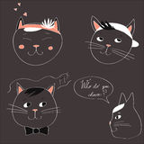 Illustration with the image of four cats and text Who do you choose on a gray background. Vector Royalty Free Stock Photography