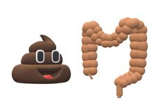 An illustration image of a happy poo and the large intestines stock photos