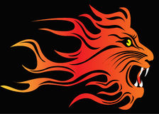 Illustration infuriated lion in fire. On black Stock Photo