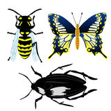 Illustration insect Royalty Free Stock Photo