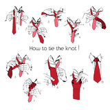 Illustration of Instructions, Scheme, Brochure for How to tie knot Royalty Free Stock Photography