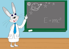 Illustration of intelligent rabbit lecture. Astronomy lecture Royalty Free Stock Photos