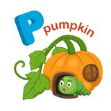 Illustration Isolated Alphabet Letter P Pumpkin Royalty Free Stock Photography