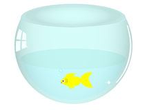Illustration of isolated fish bowl Stock Photo
