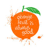 Illustration of isolated orange fruit silhouette. Stock Images