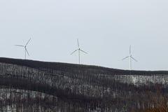 illustration isolerad wind för ström 3d Royaltyfria Bilder