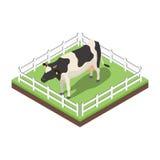 Illustration isométrique du vecteur 3d de vache illustration de vecteur