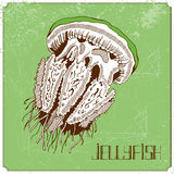 Illustration with jellyfish Royalty Free Stock Photography