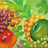 Illustration juicy beautiful fruit Royalty Free Stock Photos